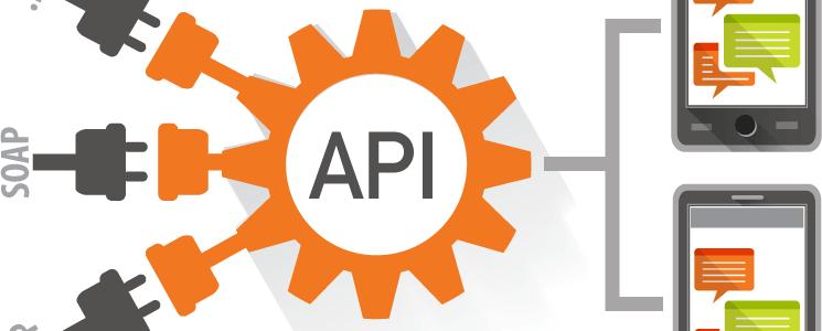 قابلیت های سامانه پیامکی برای برنامه نویسان و توسعه دهندگان